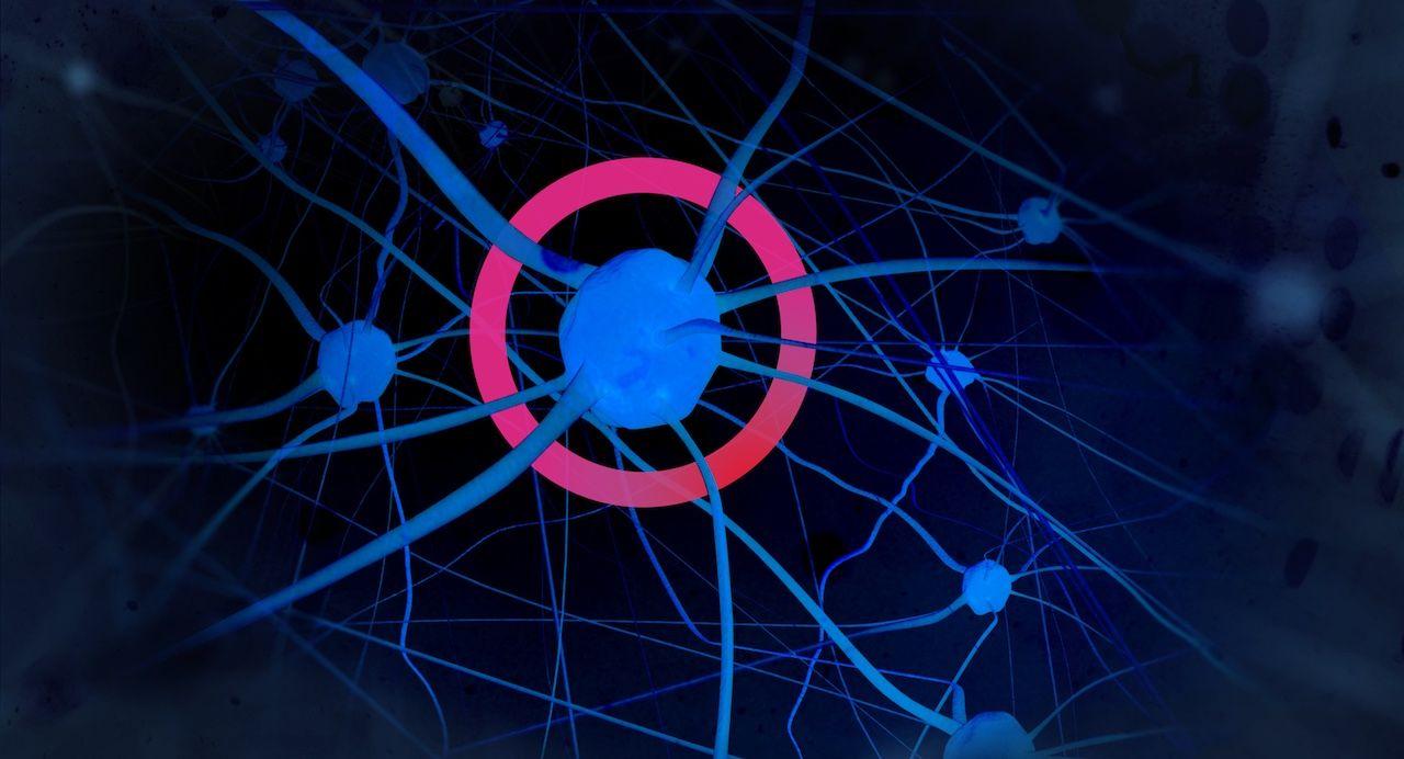 adaptive learning neuroscience thinkovery