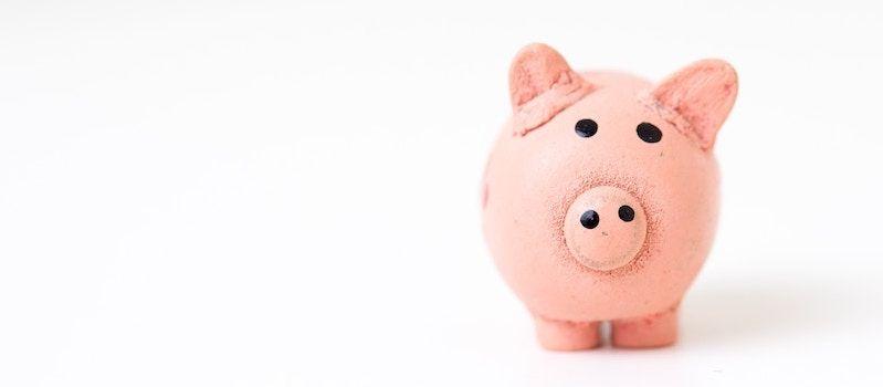 Pour savoir si la plateforme est accessible financièrement, il faut s'interroger  sur le coût de mise en place, le coût de formation, le coût de fonctionnement.